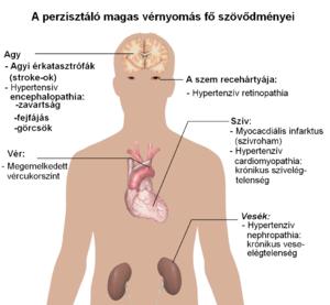 magas vérnyomás yang vagy yin perzisztens magas vérnyomás elleni gyógyszerek