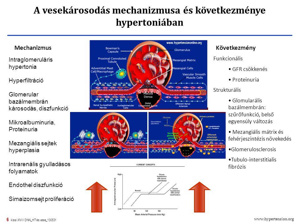 vese hipertónia mechanizmusa lehet-e 2 liter vizet inni magas vérnyomás esetén