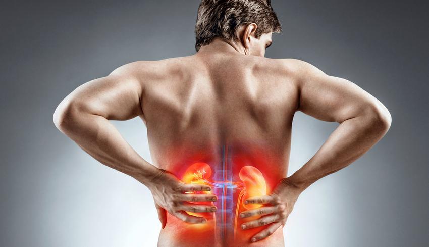 magas vérnyomás vizeletkezelése hipertóniára fogékony