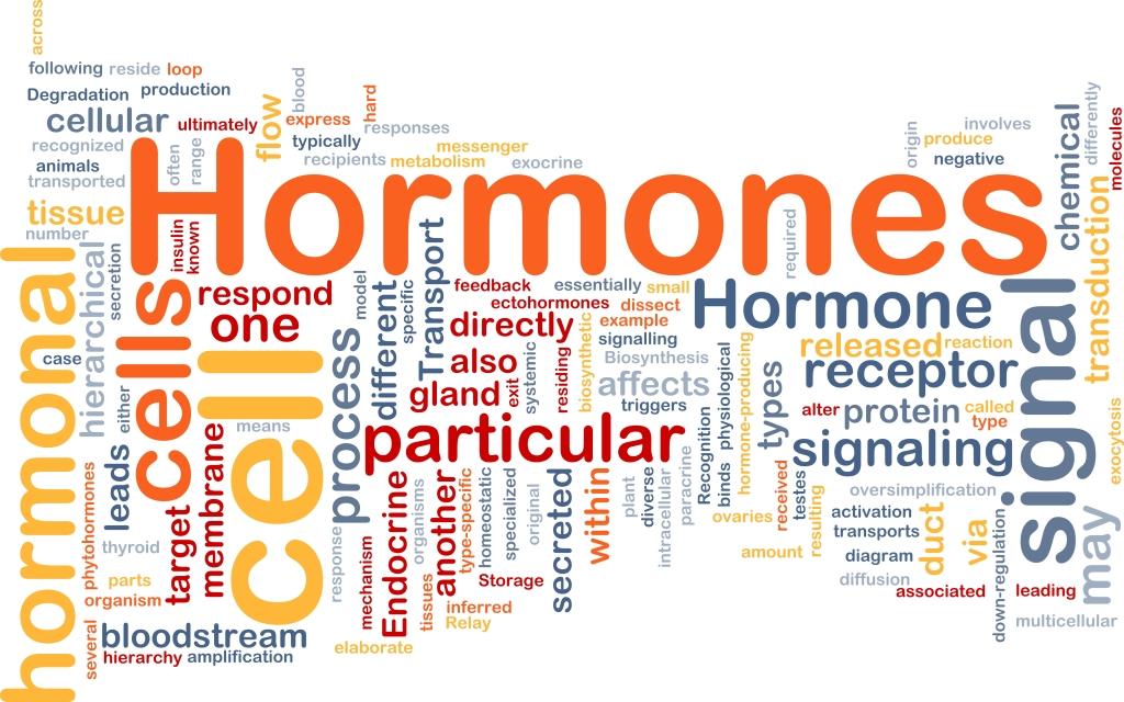 Hormonzavar is okozhat magas vérnyomást - HáziPatika