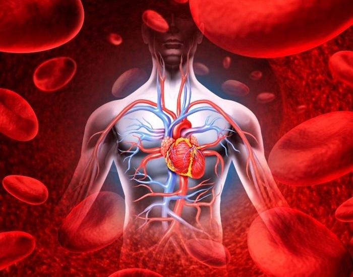 Magas vérnyomás számtani: számolás új módon - Vasculitis