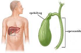 vaszkuláris hipertónia okai a magas vérnyomás cseppjeitől