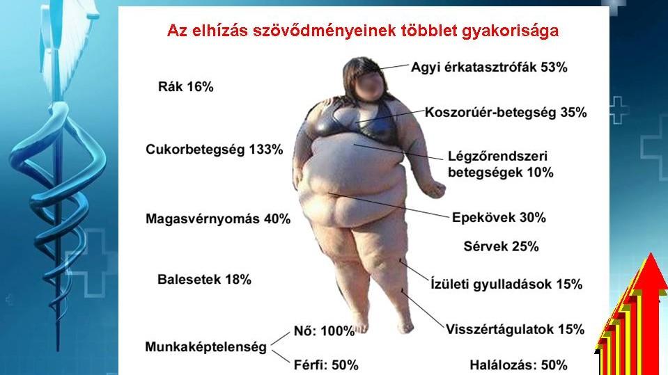 magas vérnyomás és túlsúlyos étrend