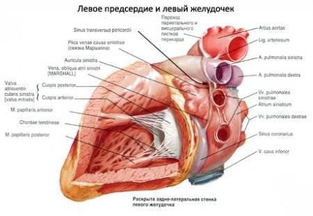 tüdőödéma hipertóniával 2-es típusú cukorbetegség és magas vérnyomás receptjei