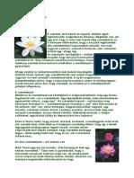 hipertónia adrenerg blokkolói magas vérnyomás kezelés készülékekkel