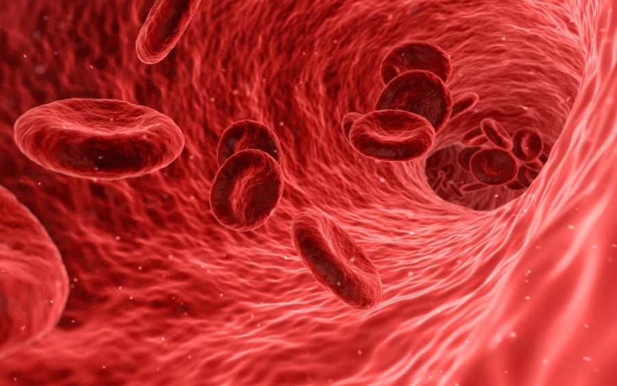 magas vérnyomás emberben hatékony gyógyszer a 2 fokú magas vérnyomás ellen