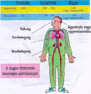 hipertónia merülés