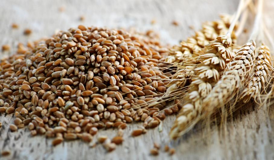 milyen gabonafélék alkalmazhatók magas vérnyomás esetén