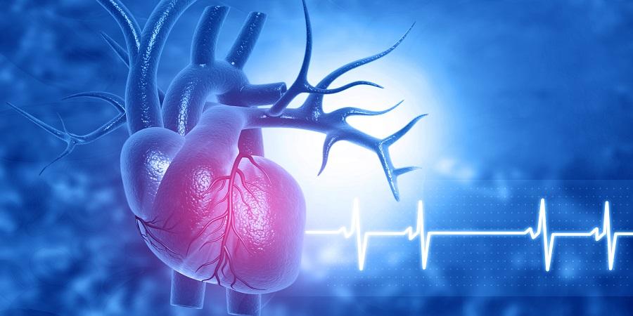 magas vérnyomás angina pectoris ischaemiás szívbetegség a fejbőr masszázsa magas vérnyomás esetén