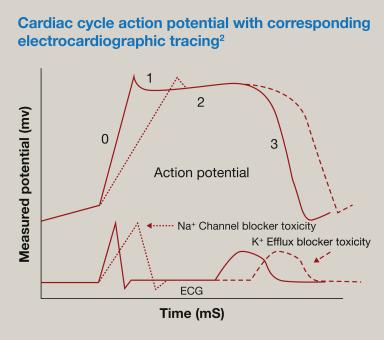 Az EKG dekódolása felnőtteknél és gyermekeknél, a táblázatok normái és egyéb hasznos információk