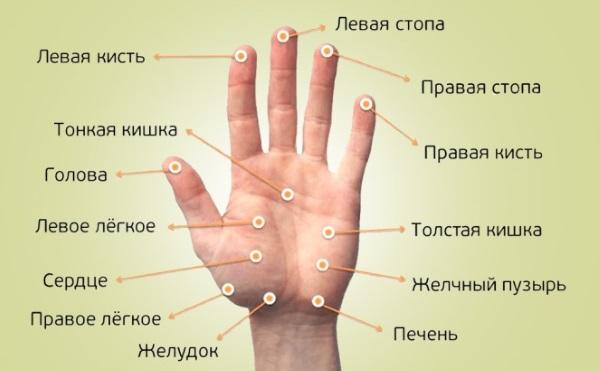 Scleroderma - rezpatko.hu