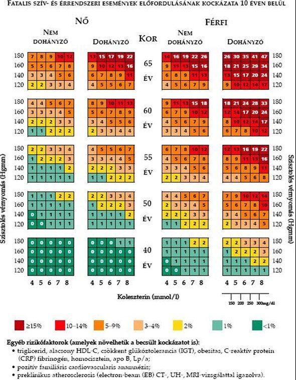 magas vérnyomás napló